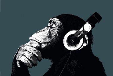The Chimp Małpa w Słuchawkach Stereo
