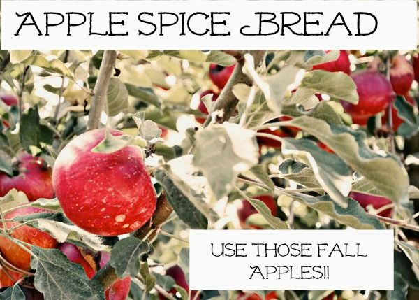 Good Enough to Eat: Apple Spice Bread - Awesome for Autumn and Holiday ...