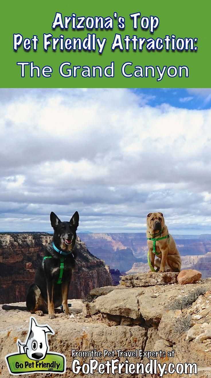 Best Hikes In Arizona Best Trails In The Grand Canyon State