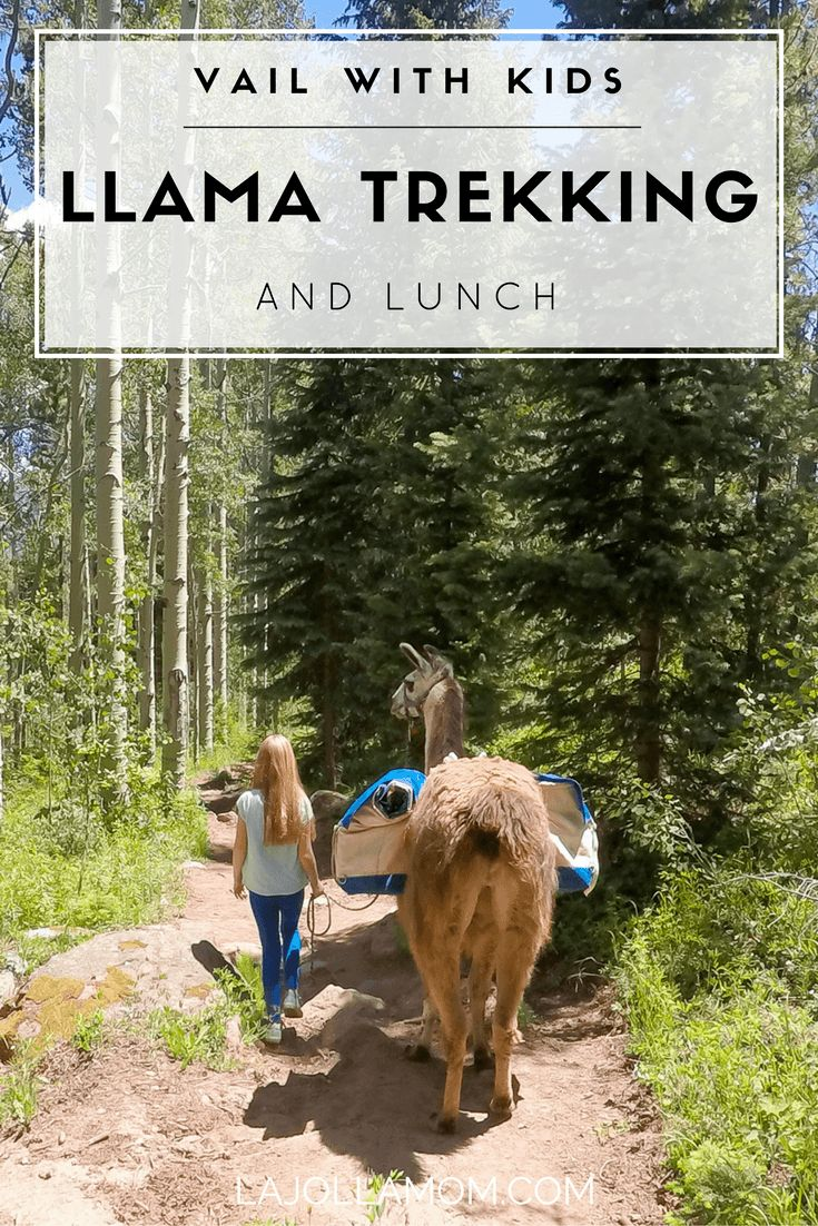 See why lunch with a llama is one of the best things to do in Vail with kids (or without) during a pretty Colorado summer. [ad]