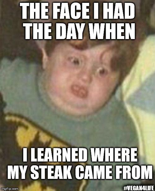 2a50783adf128322c7e25149b47c9149 steaks meme maker 31 best memes images on pinterest funny memes, meme maker and vegans,Funny Meme Maker