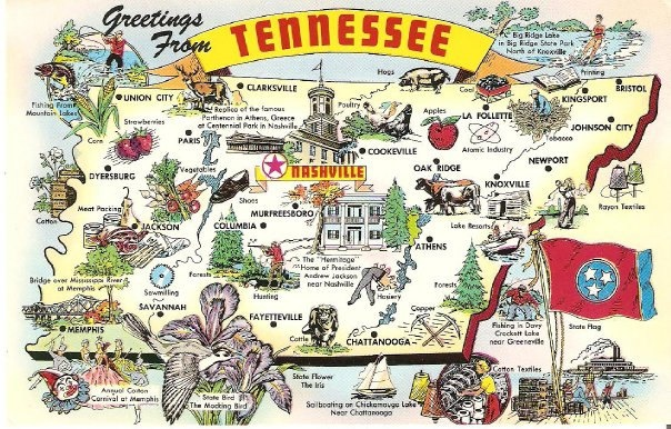 The 17 best Tennessee Towel images on Pinterest
