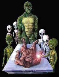 Solari se hace una división de los tipos de alienígenas ya que anatómicamente no serían iguales todos los alien, distinguiéndose  cuatro tipos: los de bulbo redondeado y Grisáceo, los homanoides, blob y los trifidus celestus cada uno con características diferentes.