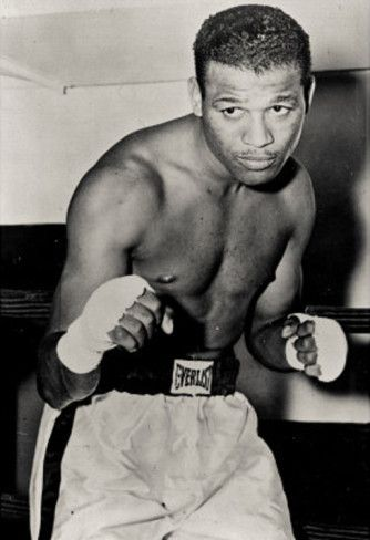 47 best Favorite Boxers images on Pinterest Boxer, Boxers and - best of boxing blueprint meaning