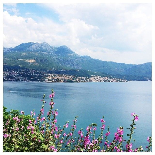 #montenegro maddisonm | Websta