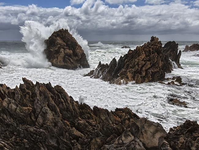 The Tarkine, Tasmania: This northwest Tasmanian area is an important…