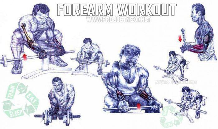 Onderarm Workout - Gezonde Fitness Gym Biceps Oefeningen Tricep
