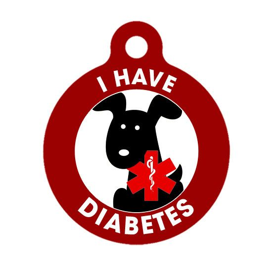 Pet ID Tag  I Have Diabetes Dog Medical ID Tag  by ebonypawspets