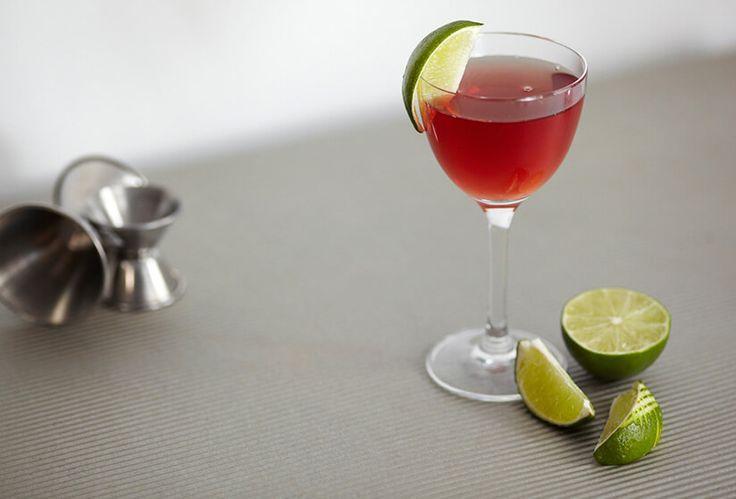 Receta Margarita de Arándano - Cómo preparar un coctel Margarita de Arándano perfecto