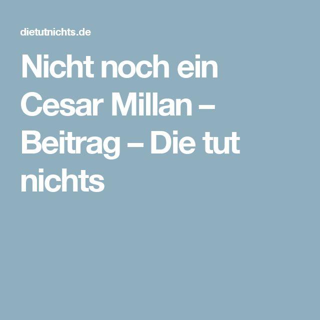 Nicht noch ein Cesar Millan – Beitrag – Die tut nichts