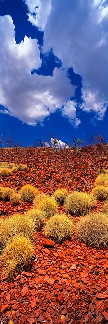 Spinifex Karijini National Park :: Australia :: by Christian Fletcher.
