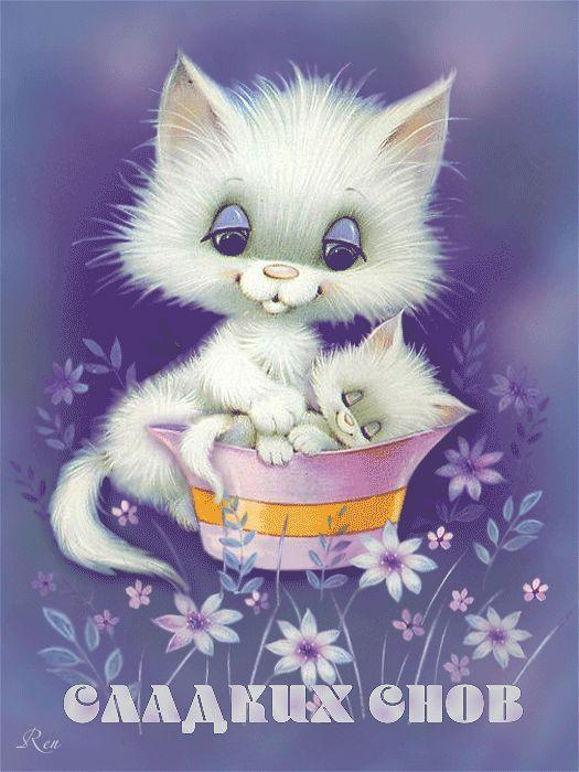 Вовка днем, картинки красивые спокойной ночи кошки анимация