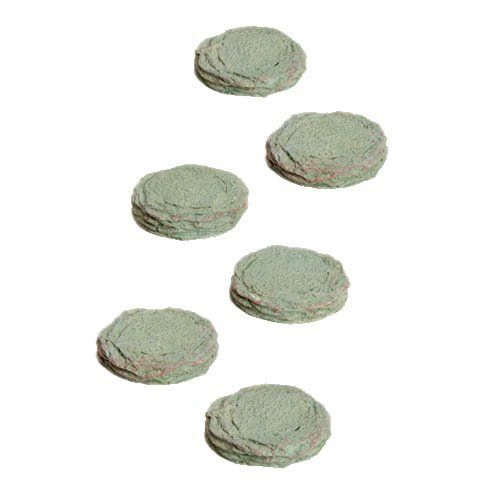 Fairy Gardening Stepping Stones (6 pieces) by Georgetown. $5.99