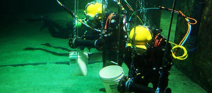 Top 3 Underwater Welding Schools in the UK: England & Scotland