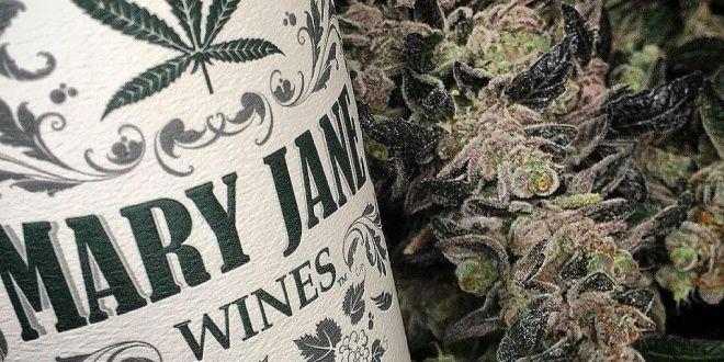 quibbll-com-v-ssha-vypustili-vino-iz-marihuany