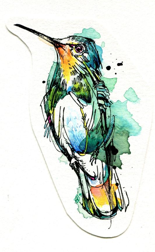 Emerald Hummer: India ink, Tombow marker, watercolor paint. #watercolor #illustration #hummingbird by Abby Diamond