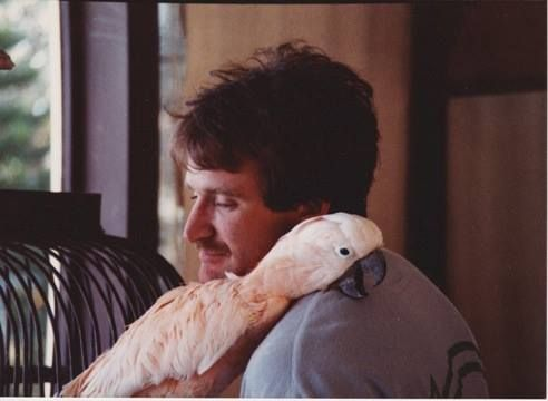 Robin Williams Loved Birds, Too – We Will Never Forget You
