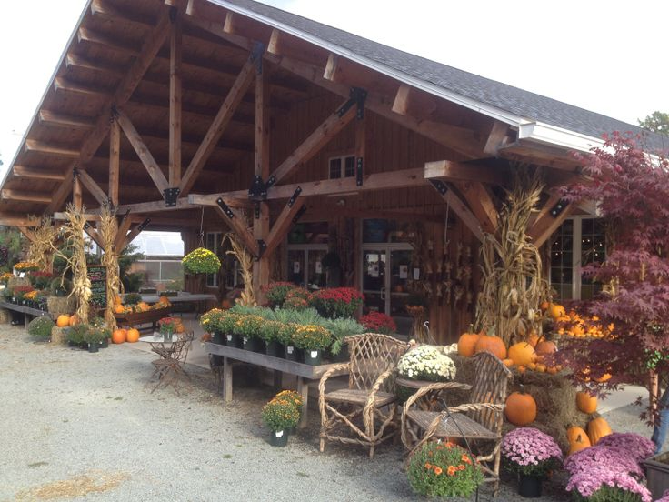 33 Best Images About Cabin On Pinterest Colorful Flowers Kale And Wheelbarrow