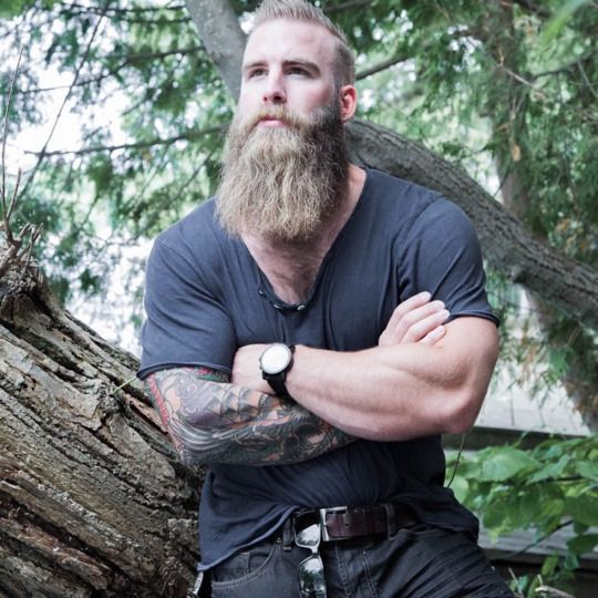 Terrific 1000 Images About Awesome Beard Styles For Men On Pinterest Short Hairstyles For Black Women Fulllsitofus
