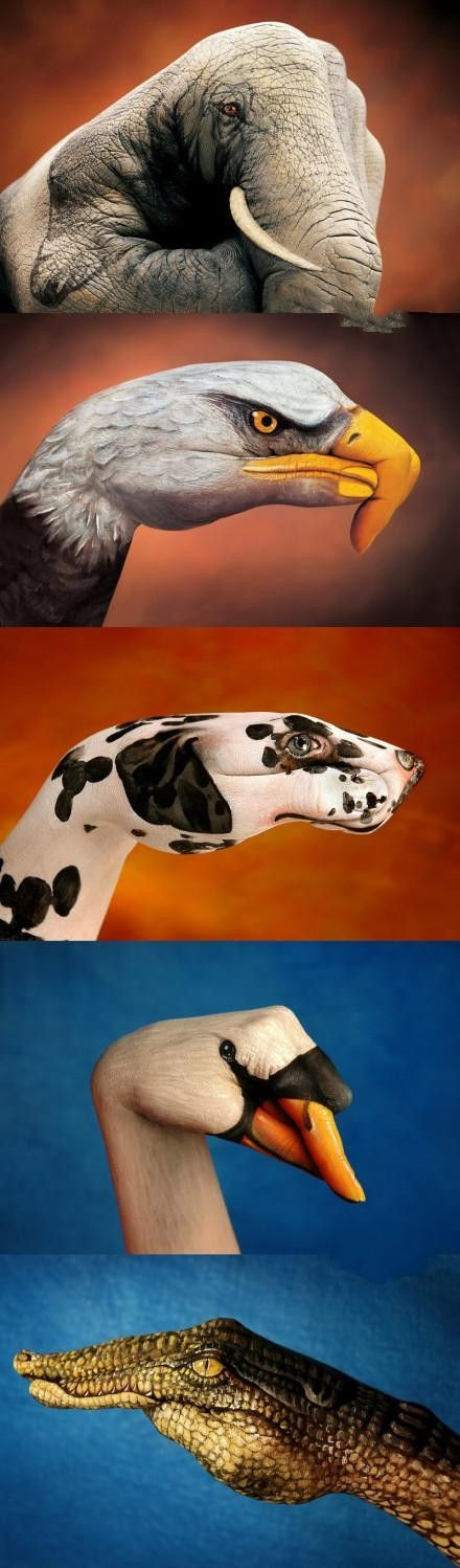 HANDsomely gorgeous creatures! (The artistic hand.)