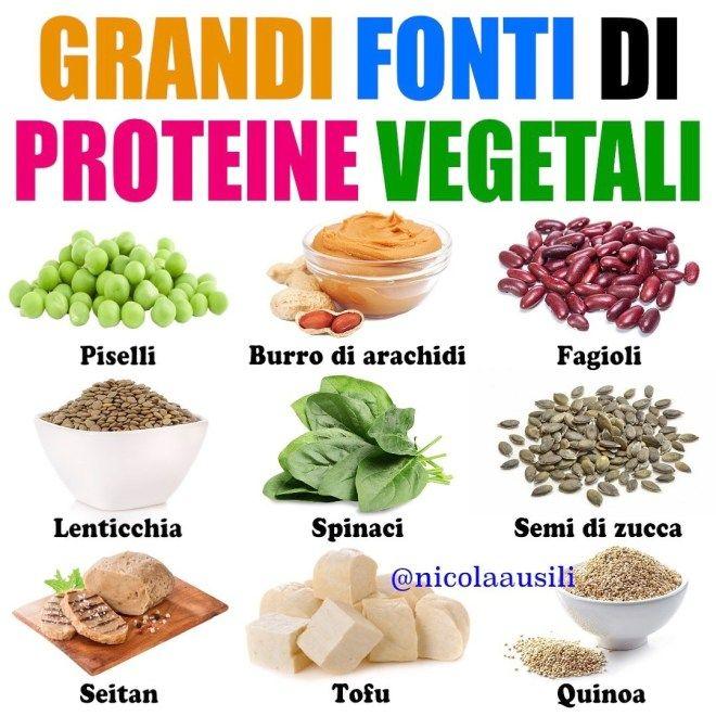 quali sono le proteine dimagranti di