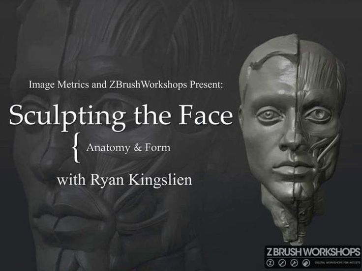 Sculpting The Face Anatomy In Zbrush :http://www.createcg.net/sculpting-the-face-anatomy-in-zbrush/