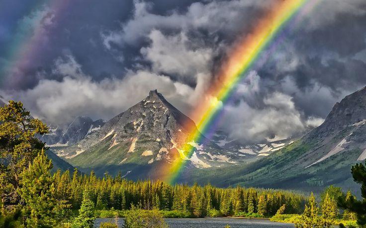 Canlılık ve güzellik, yasalarına göre yaşayan insanlara doğanın armağanlarıdır.                                Leonardo da Vinci