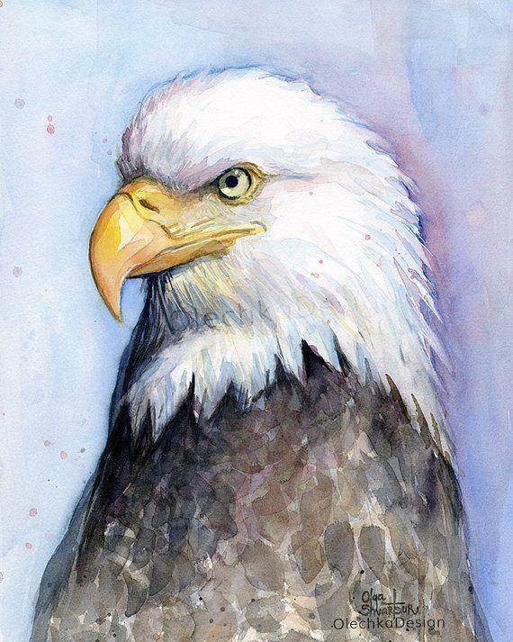 Bald Eagle Painting Watercolor Portrait Eagle Art by OlechkaDesign