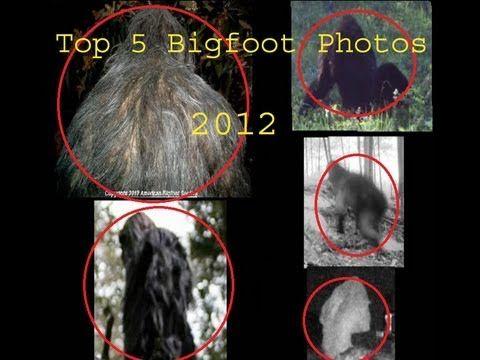 Top 5 Bigfoot photos!~2013~People's choice awards!