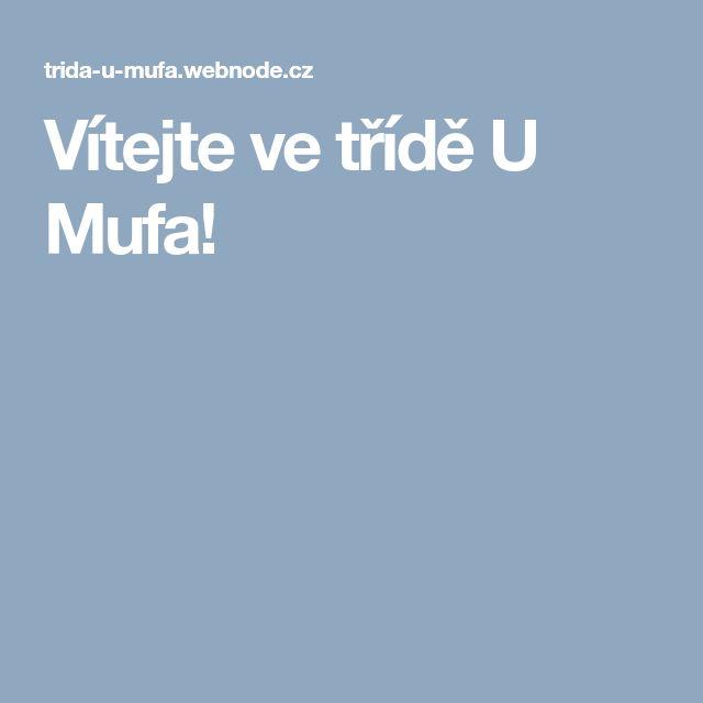 Vítejte ve třídě U Mufa!