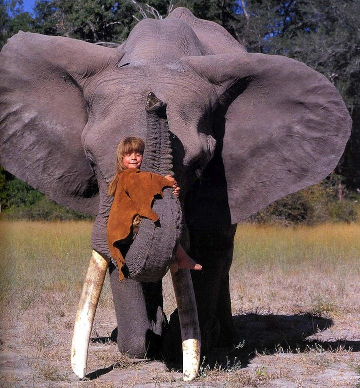 The Young Girl Who's Best Friends with African Wildlife - My Modern Metropolis