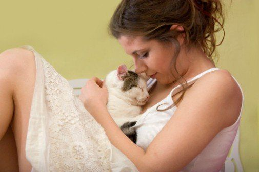 New study may yield cure for #cat #allergies | ahchealthenews.com
