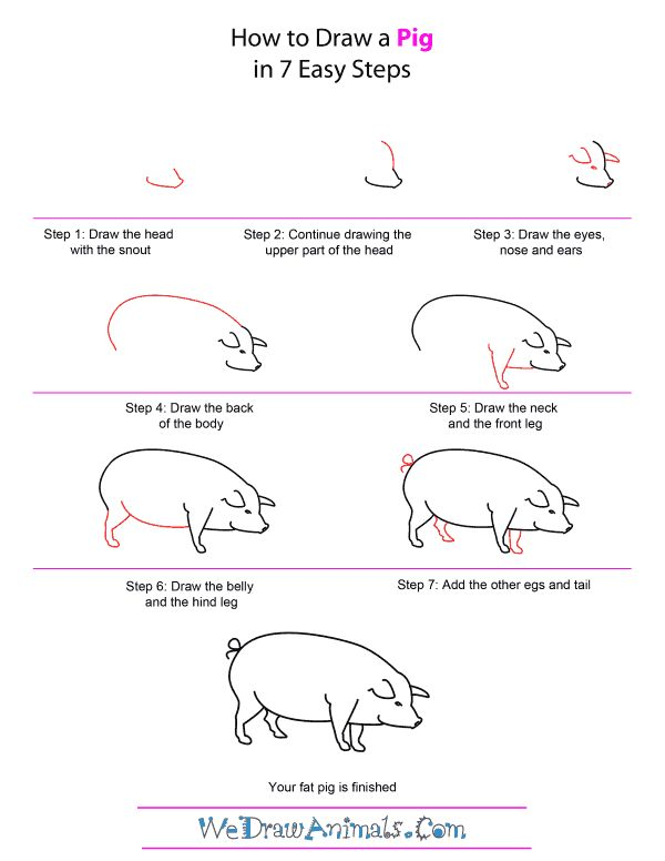 how to draw a pig step by step for kids