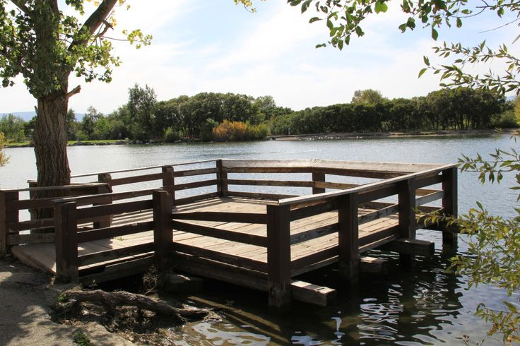 1000 Ideas About Pond Landscaping On Pinterest Ponds