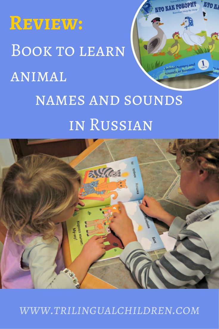 "birds names in russian language Typical russian family names end in ""-ov"", ""-ev"", or ""-in"" in other words, originally ivan petrov meant ivan, son of pyotr in generations that followed, the original last name was retained as the family name, while the name of a person's father served as a patronymic: eg vasily ivanovich petrov is vasily, son of ivan from the petrov family."
