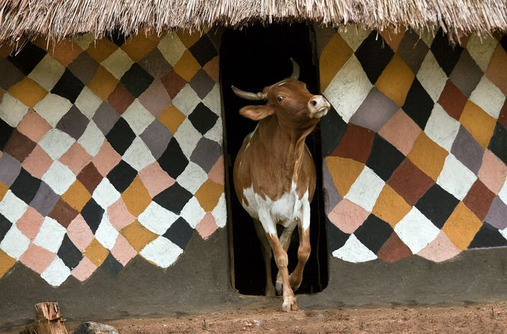 Painted houses of the Bench in southern Ethiopia, 2011-2013. Photographs by Hans Silvester
