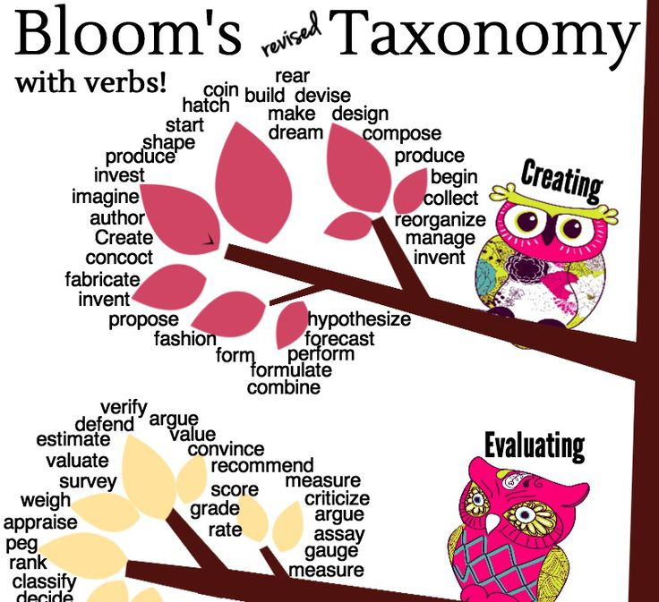 Using Learning Standards And Bloom S Taxonomy With: Download This Adorable Owls Revised Bloom's Taxonomy