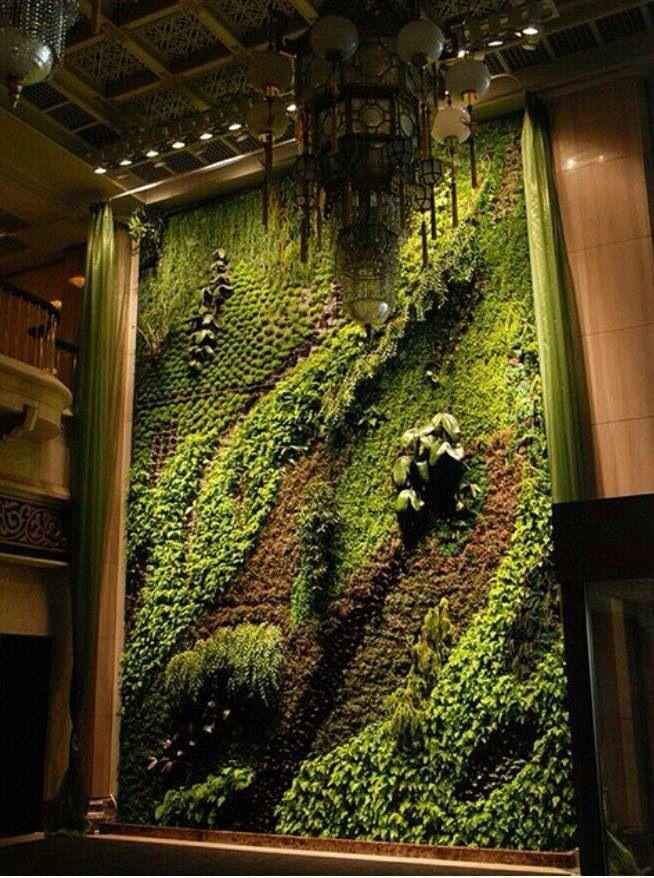 Pflanzenwand                                                                                                                                                                                 Mehr