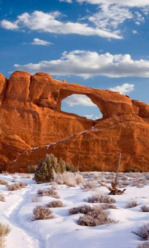 Arches National Park, Utah, United States.