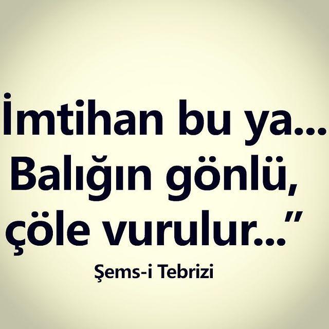 Sems-i Tebrizi