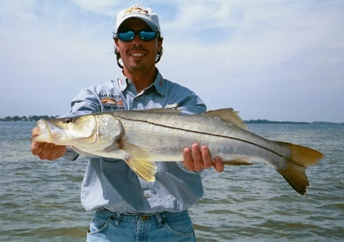 Captain sam arcure has been fishing florida 39 s backcountry for Fishing for snook