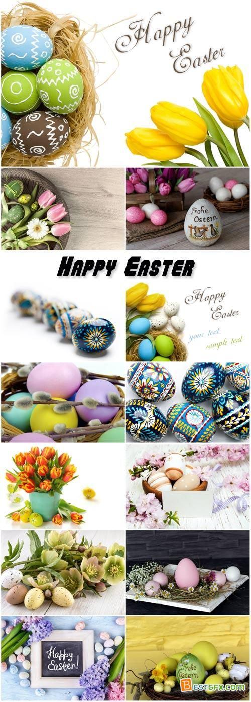 Easter composition of Easter eggs and flowers