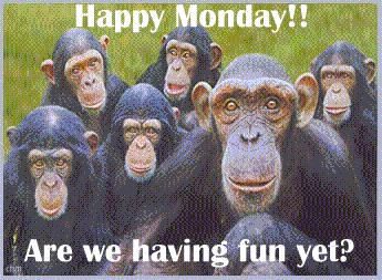 funny quote images about monday | Happy Monday Funny Greeting | Graphics99.com