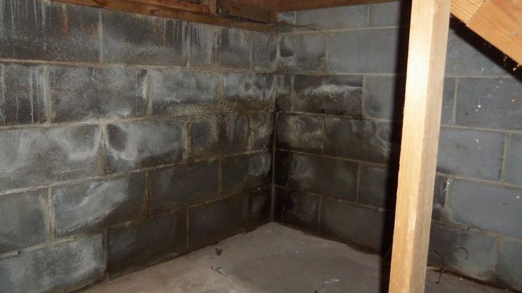При капиллярном проникновении влага с пола испаряется и оседает на стенах
