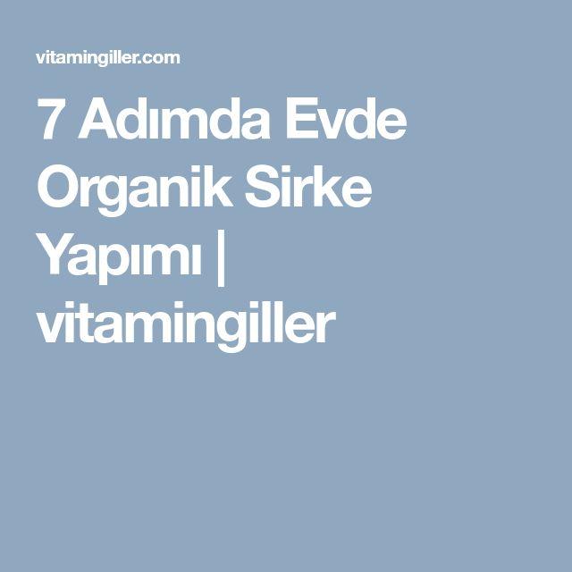 7 Adımda Evde Organik Sirke Yapımı   vitamingiller