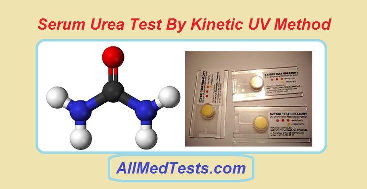 Serum Urea Test By Kinetic UV Method