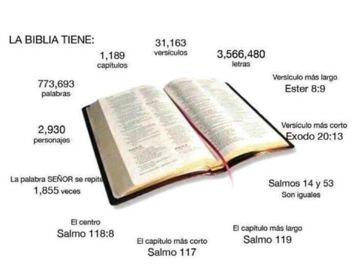 Libros de la Biblia  u2026   Pinteres u2026