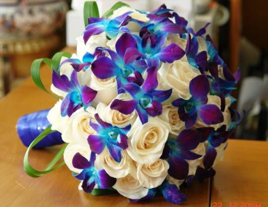 blue dendrobium orchids and cream roses.