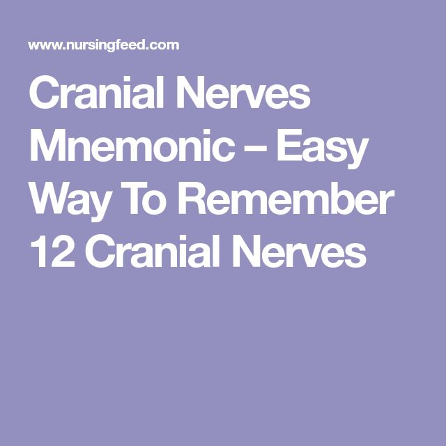 Cranial Nerves Mnemonic – Easy Way To Remember 12 Cranial Nerves
