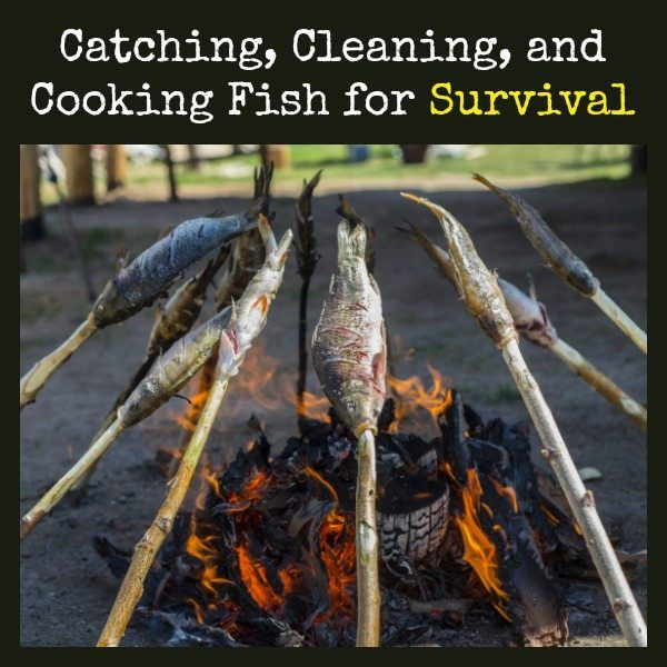 Learn the basics of cooking, cleaning, and cooking fish in a survival situation.  Catching Cleaning Cooking Fish for Survival | Backdoor Survival